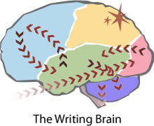 Map of the Writing Brain